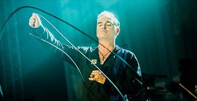 Morrissey_390x200.jpg