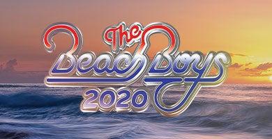 More Info for The Beach Boys