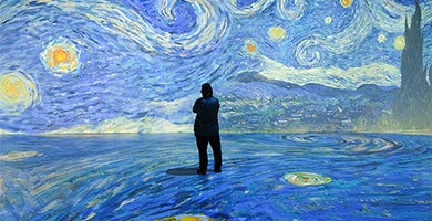 More Info for Beyond Van Gogh: The Immersive Experience